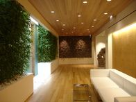 Interior Plantscape Design
