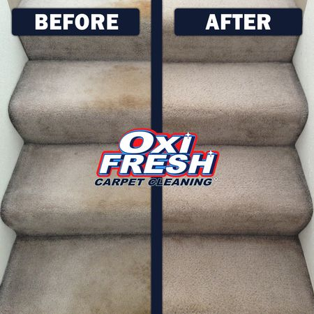 Image 5 | Oxi Fresh Carpet Cleaning
