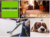 Image 4 | Fiber Care Carpet Cleaning