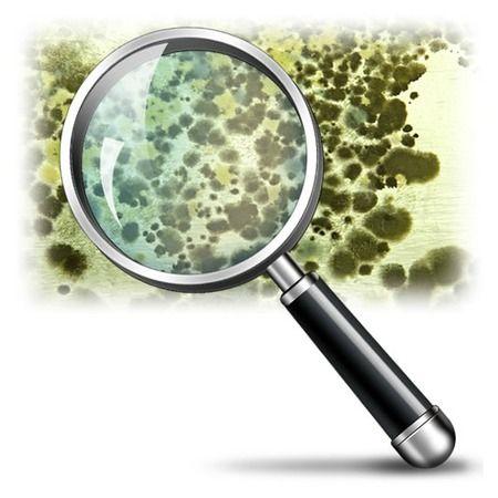Image 4 | All Pro Home Inspectors Inc - David B Jolly
