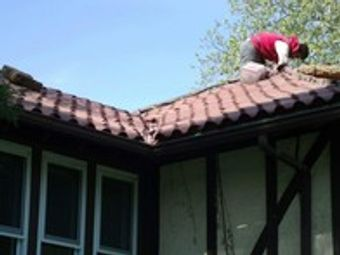 We can help with siding and roofing!