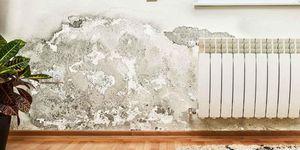 Reconstruction Mold Remediation, LLC
