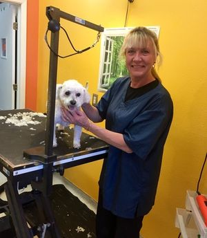 We offer the highest quality grooming at VCA Alpine Animal Hospital