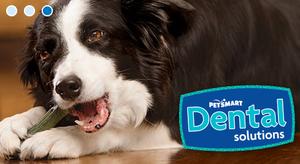 Image 9 | PetSmart