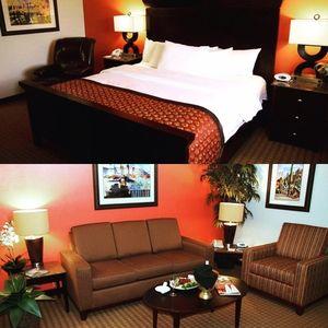Image 5 | Viscount Suite Hotel