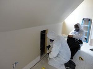 Image 2 | BreatheEasy Mold Solutions LLC