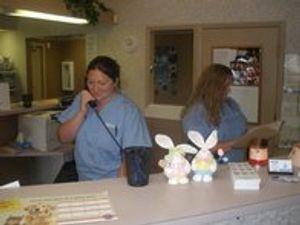 Image 6 | VCA Briarcliff Animal Hospital