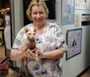 Image 2 | Queens Midway Animal Hospital