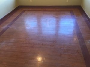 Image 7 | Simply Clean Carpet Care