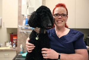 Image 6 | BluePearl Pet Hospital