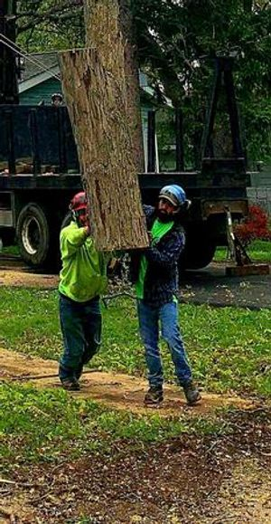 We are the top local choice for tree trimming, tree removal, and stump grinding in the Northeast Ohio area.  We offer 24/7 emergency services, so if you have storm damage or a tree that falls in the middle of the weekend or the middle of the night, we're here to help!  Contact us today for details!