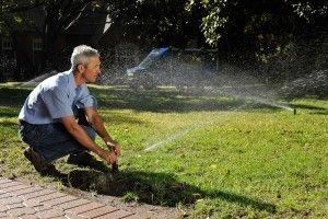 Image 4 | Andy's Sprinkler, Drainage & Lighting