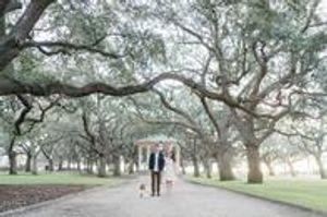 Image 4   Digital Spark Weddings