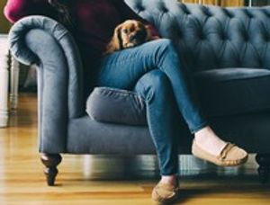 Upholstery needs to be professionally cleaned, when is the last time you had yours cleaned?