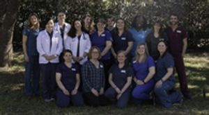 The caring and experienced team at VCA Arbor Animal Hospital!