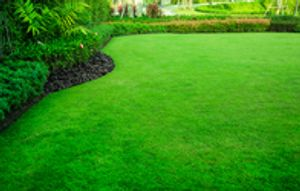 Having a beautiful lawn should not be a hassle in Miami, FL. Sometimes you need help maintaining your landscape and caring for your lawn so you can have more time to relax and enjoy it. Let Blooming Orchids Landscaping inc. manage your residential or commercial property like it was our own.  Call today for a free consultation.