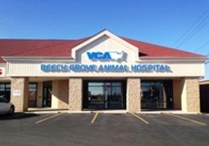 Image 7 | VCA Beech Grove Animal Hospital