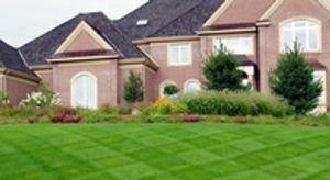 Image 2 | VIP Lawn & Landscape