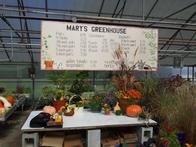 Image 6 | Mary's Greenhouse