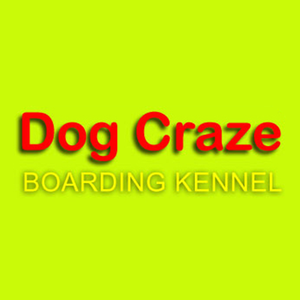 Image 1 | Dog Craze Boarding Kennel