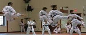 Image 6 | Darimar Martial Arts