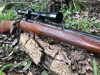 Image 6 | Armed in America Firearms