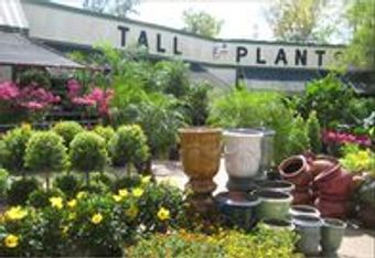 Best plant nursery and garden center