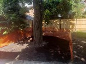 We assist with tree root problems and tree construction projects.