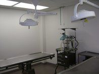 Image 3 | VCA Knightswood Animal Hospital