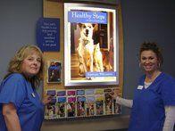 Image 6 | VCA Knightswood Animal Hospital