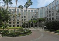 Tampa  LasikPlus Vision Center