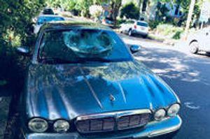 Image 4   Kaizen Auto Glass Repair