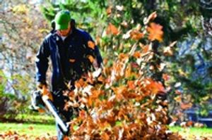 Lawn Fx Omaha Lawn and Landscaping