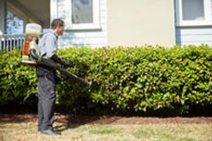 Our Mosquito Management services can help protect both your outdoor spaces and your health. This proactive service provides ongoing monthly treatments from April to October, when mosquitoes are most likely to be active.