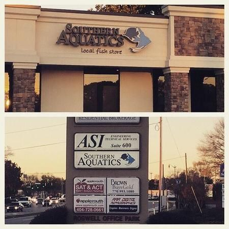 Roswell's Local Fish Store, located at 620 Holcomb Bridge Rd, Suite B, in Roswell!