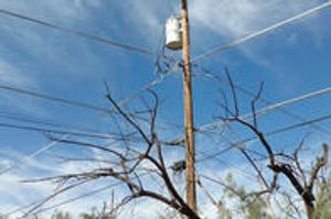 Tucson Electrical Line Clearance