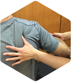 Image 3 | Boulder Sports Chiropractic