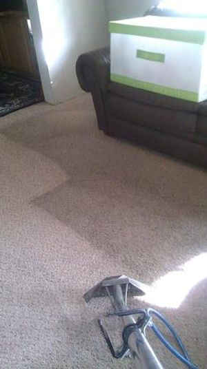 Image 6 | Excellence Janitorial Services & Carpet Cleaning