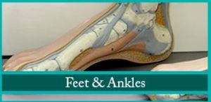 Image 3 | The Foot & Ankle Center of Philadelphia