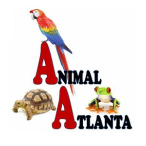 Image 1 | Animal Atlanta