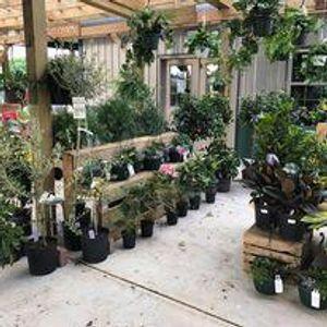 Image 7 | Gregory Creek Garden Center