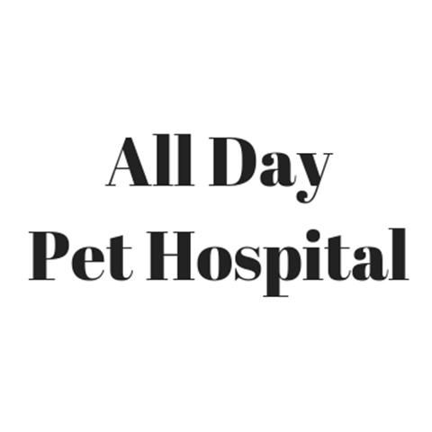 Image 1 | All Day Pet Hospital