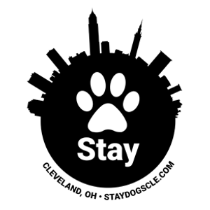 Image 1 | Stay. Dog Daycare and Boarding