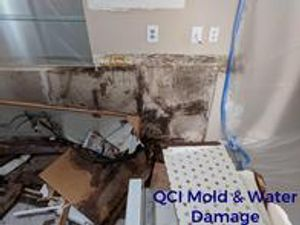 Image 9 | QCI Mold and Water Damage