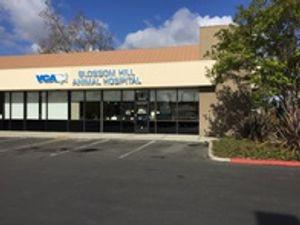 Welcome to VCA Blossom Hill Animal Hospital!