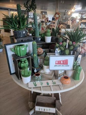 Are you looking for that perfect touch to your southwest living room or guest room? Maybe you have a vacation home in beautiful Arizona? Come check out our cactus decor!