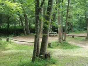 Image 10 | Jenny's Creek Family Campground