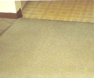 Image 5 | Simply Clean Carpet Care
