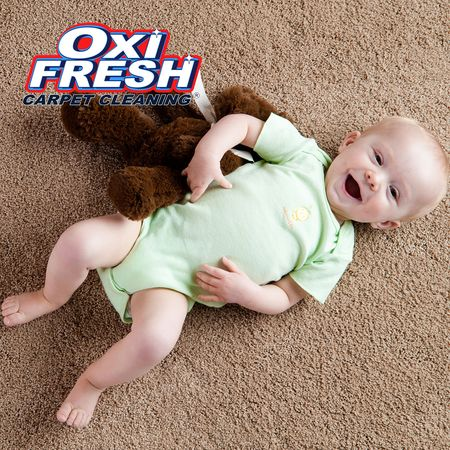 Image 10 | Oxi Fresh Carpet Cleaning