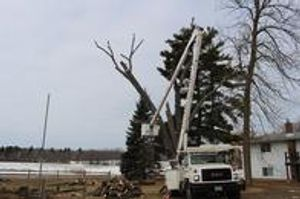 Extensive knowledge and top of the line equipment allow us to offer a wide variety of services at the best rate! We take pride in quality tree care with a certified arborist onsite daily, ensuring all work is to the highest standards. Customer satisfaction is absolutely guaranteed. No hidden fees or surprises!